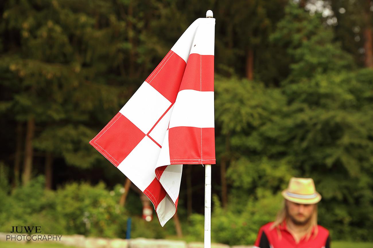 Golffahnen (45 cm x 31 cm) 18 Stück